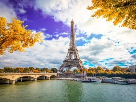 Eiffel Tower and Pont dIena with yellow autumn tree, Paris France